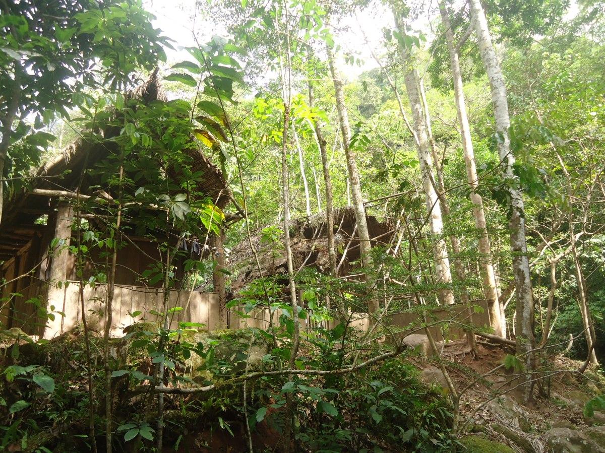 animal rescue center peru, Tarapoto, Cerelias, Orlango Zagazeta